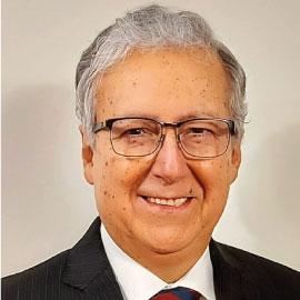 Ing. Adolfo Samaniego